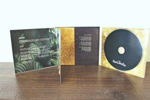 画像2: ラトビア音楽CD Tautumeitas - Tautumeitas